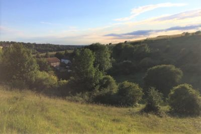Green spaces Moulsecoomb & Bevendean
