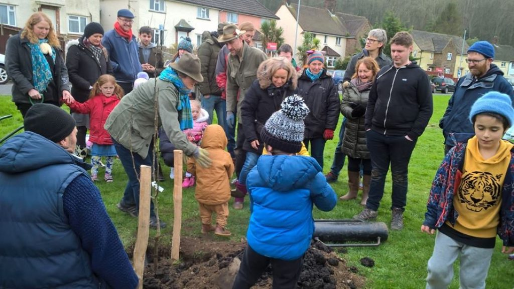 Orchard Planting- The Avenue Brighton